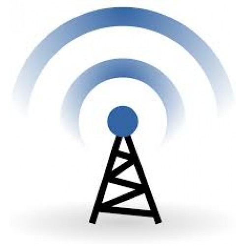 Wireless / IP Monthly Fee